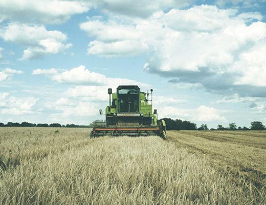 investir no agronegócio